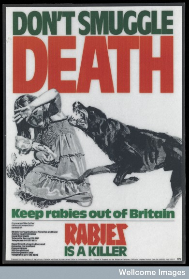L0070327 Poster advertising the dangers of rabies